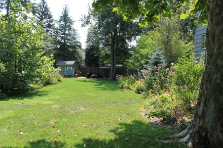 The west side of the yard, looking from the street to the back corner, where my pile makes its home.