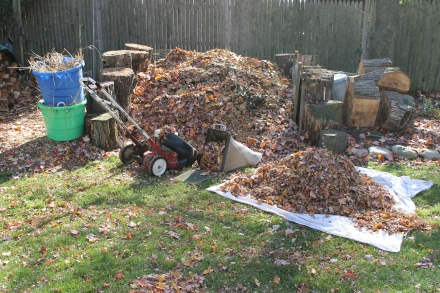 Though I add many leaves wholesale to my pile, mulching with the mower vastly reduces volume.