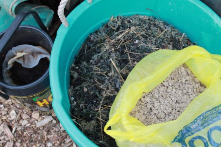 Some kitchen scraps, a half bucket of seaweed, and a bag from the neighbor's rabbit hut. All good to go!