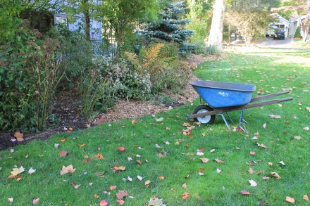 Each fall I replenish the garden beds of perennials with a fresh layer of wood chips.