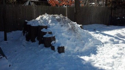 My pile, freshly adorned with more snow and a blessing of ash.