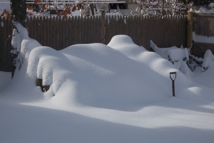 A winter view of my pile under a fresh mantle of snow from a few years ago.