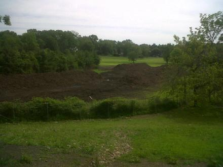 A view of one of the last tracts of open land left in Westport, on which the owners have spread leaf mulch to compost.