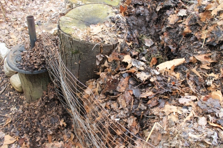 The tailings from a burrowing rodent in the back corner of my pile; its trail into mix soon runs cold.