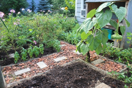 "An ""after"" photo of my vegetable garden, which accepts all the compost I can give it."