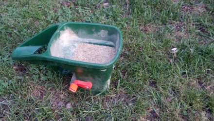 I crank out thousands upon thousands grass seeds to cast about the lawn.