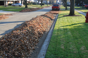 Leaves raked to the gutter line of a street in Oak Park, Mich., at a high cost to the town.