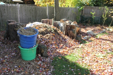 Shredded paper and a helping of salt marsh grass harvested from the seashore will keep my pile airy under the coming crush of fall leaves.
