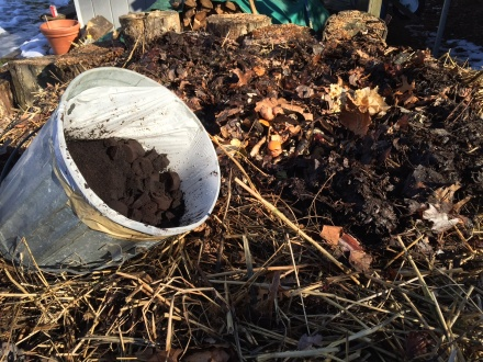 A bucket of pressed coffee grounds from Starbucks will give my pile a big, mid-winter pick-me-up.