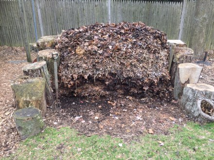 My pile, poised to begin spring as a stout stack of decaying leaves from the fall, spiked in the middle by a winter's worth of fixin's.