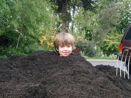 A young boy playing in Cedar Grove compost.