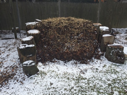 My pile shrugs off a dusting of snow on an early March morning.