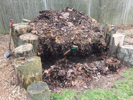My pile, in the process of taking a big step forward at the start of spring.