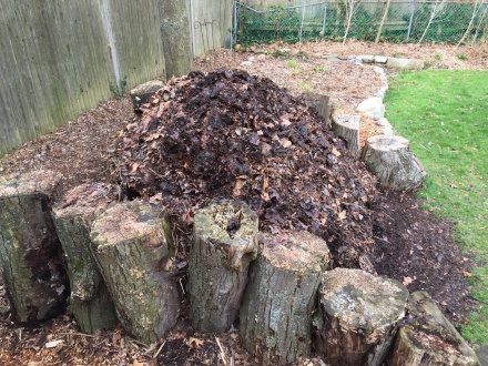 A side view of my much-condensed pile in mid April. Soon, it will be engorged with the green fodder of the growing season.